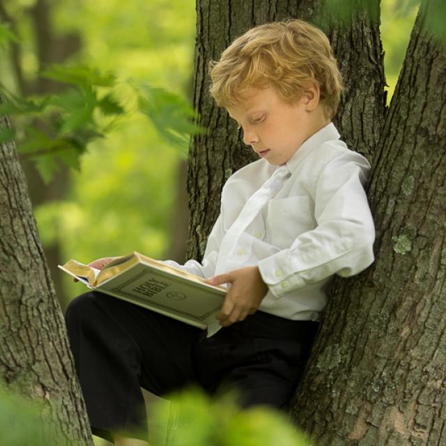 First communion portrait in tree