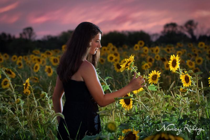 sunflower senior